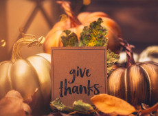 Happy Thanksgiving! Attitudes of Gratitudes, Zodiac Sign by Zodiac Sign